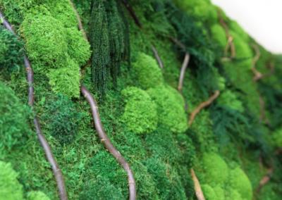 Moss Art Wall 1